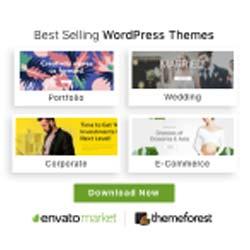 TrendStrategics The Best Website Designer Website Design Topeka Envato Themes Theme Forest